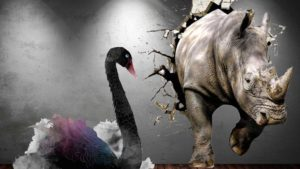 Grey rhinos and black swans | business risks